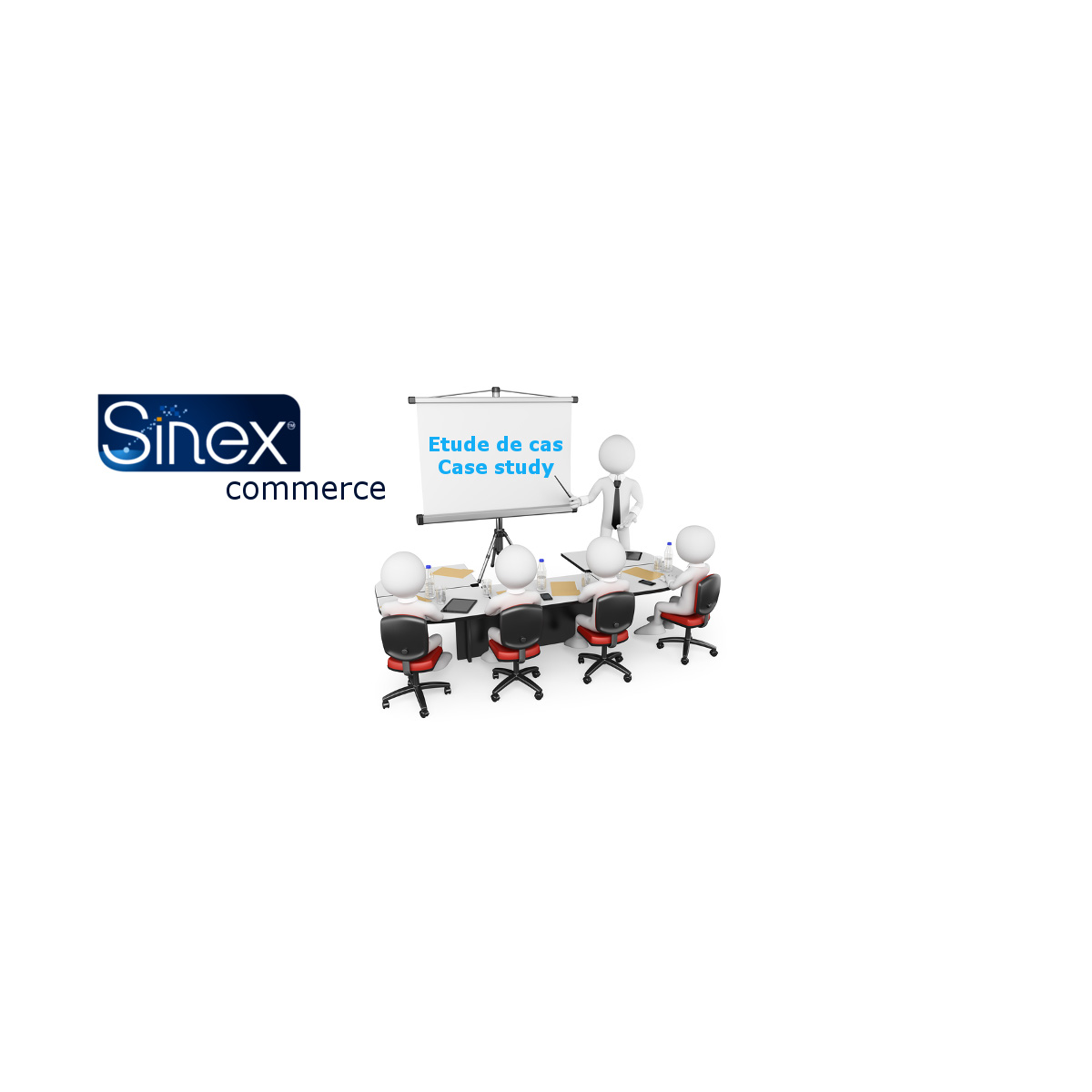 ERP Sinex Commerce